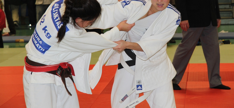 JudoBanner