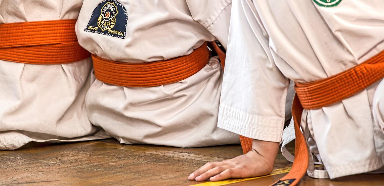 TaekwondoBanner